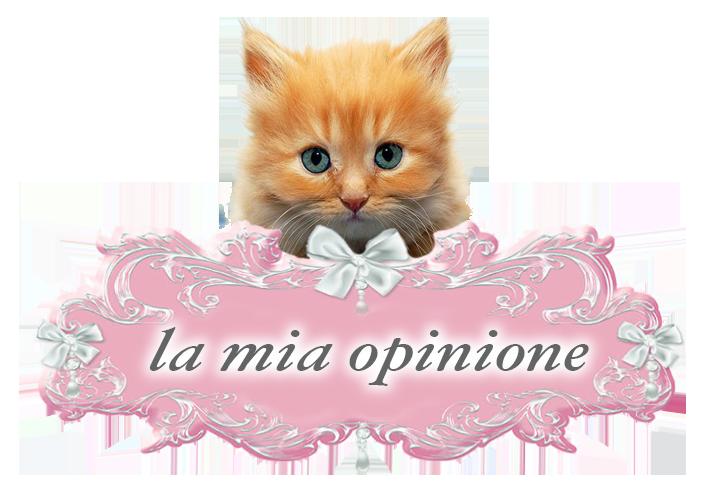Catsuitehome Il Primo Hotel 5 Stelle Lusso Solo Per Gatti